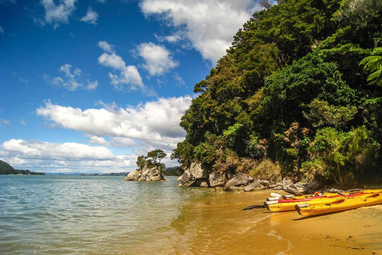 Sailing and Kayaking the Abel Tasman National Park