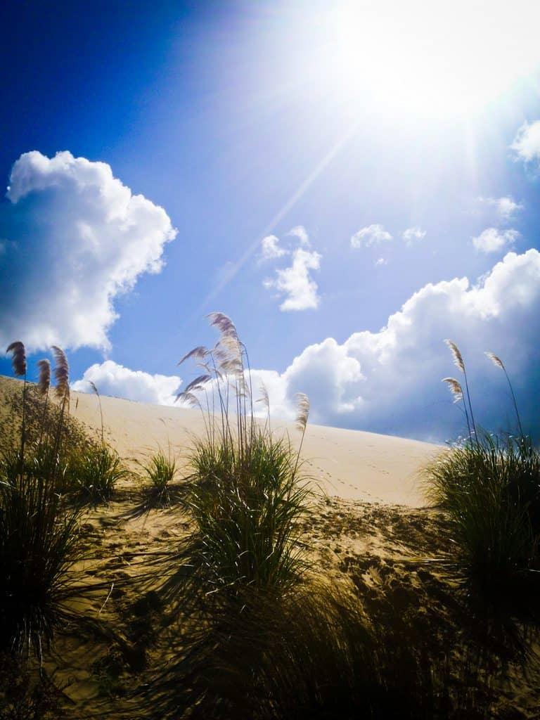 Sand Dunes off Ninety Mile Beach