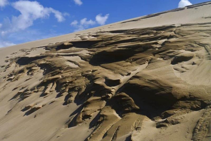Sand Dunes, Ninety Mile Beach