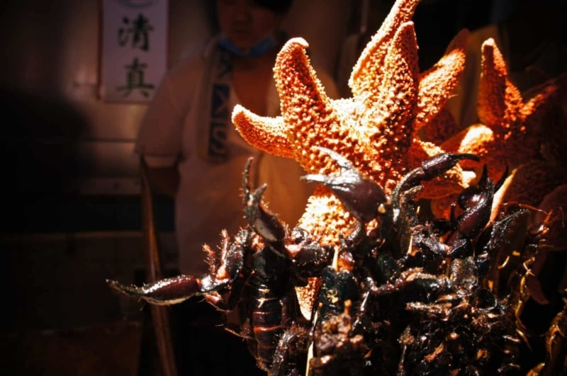 Starfish and scorpions, a tasty snack