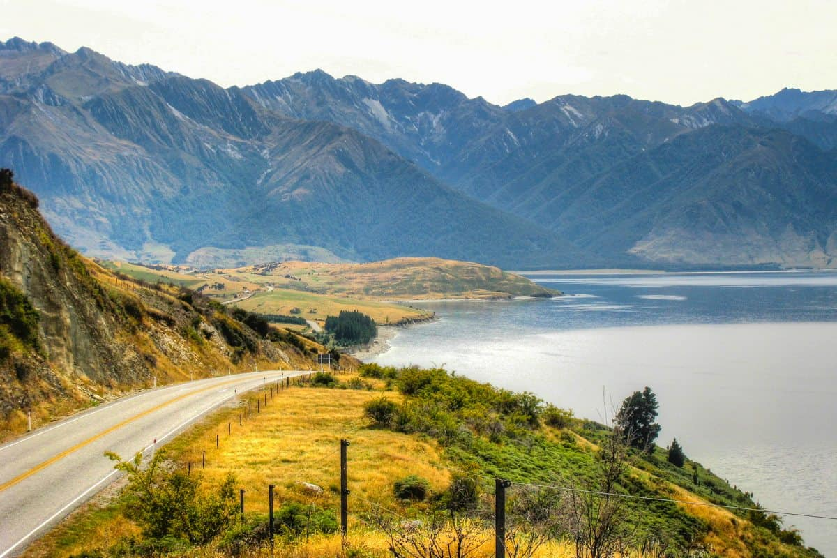 How to work in New Zealand with a working holiday visa