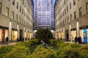 20 Killer Photos of New York