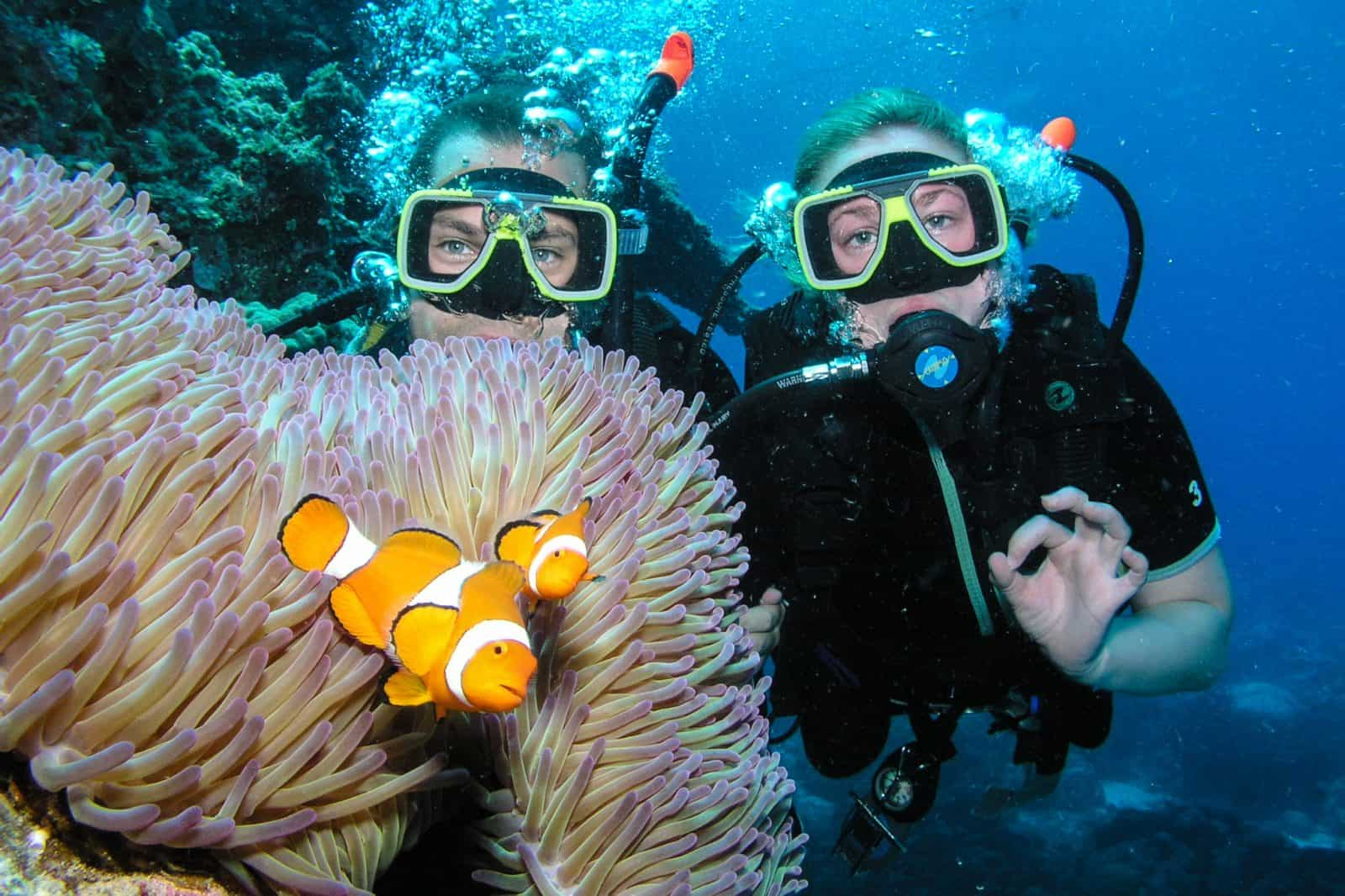 The Best Scuba Diving on the Great Barrier Reef