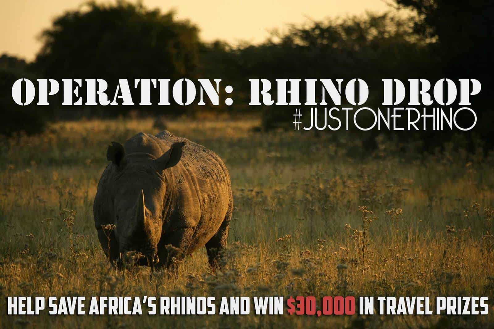 Operation Rhino Drop: Help Save Africa's Rhinos