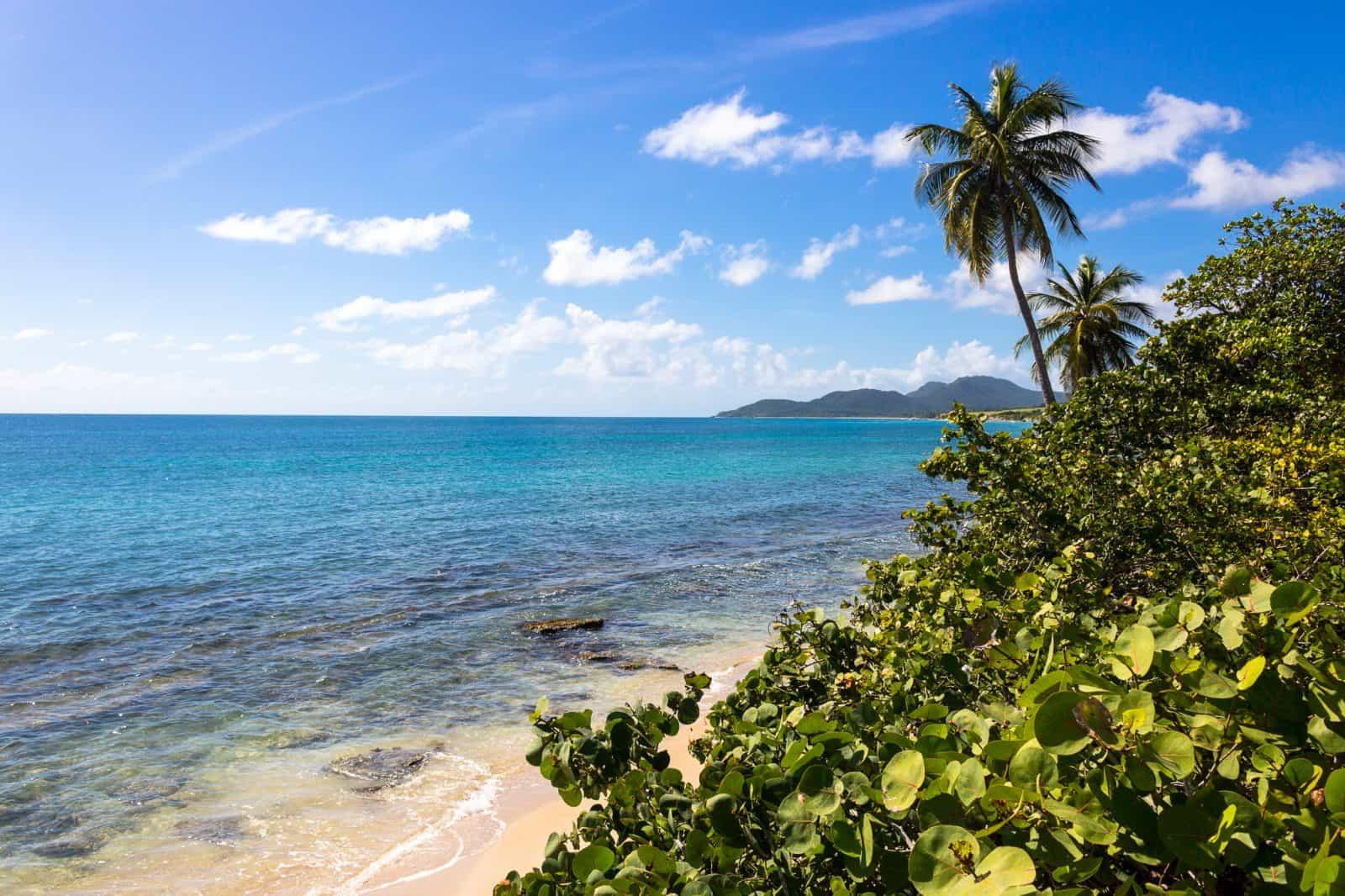 Ocean Views, Vieques