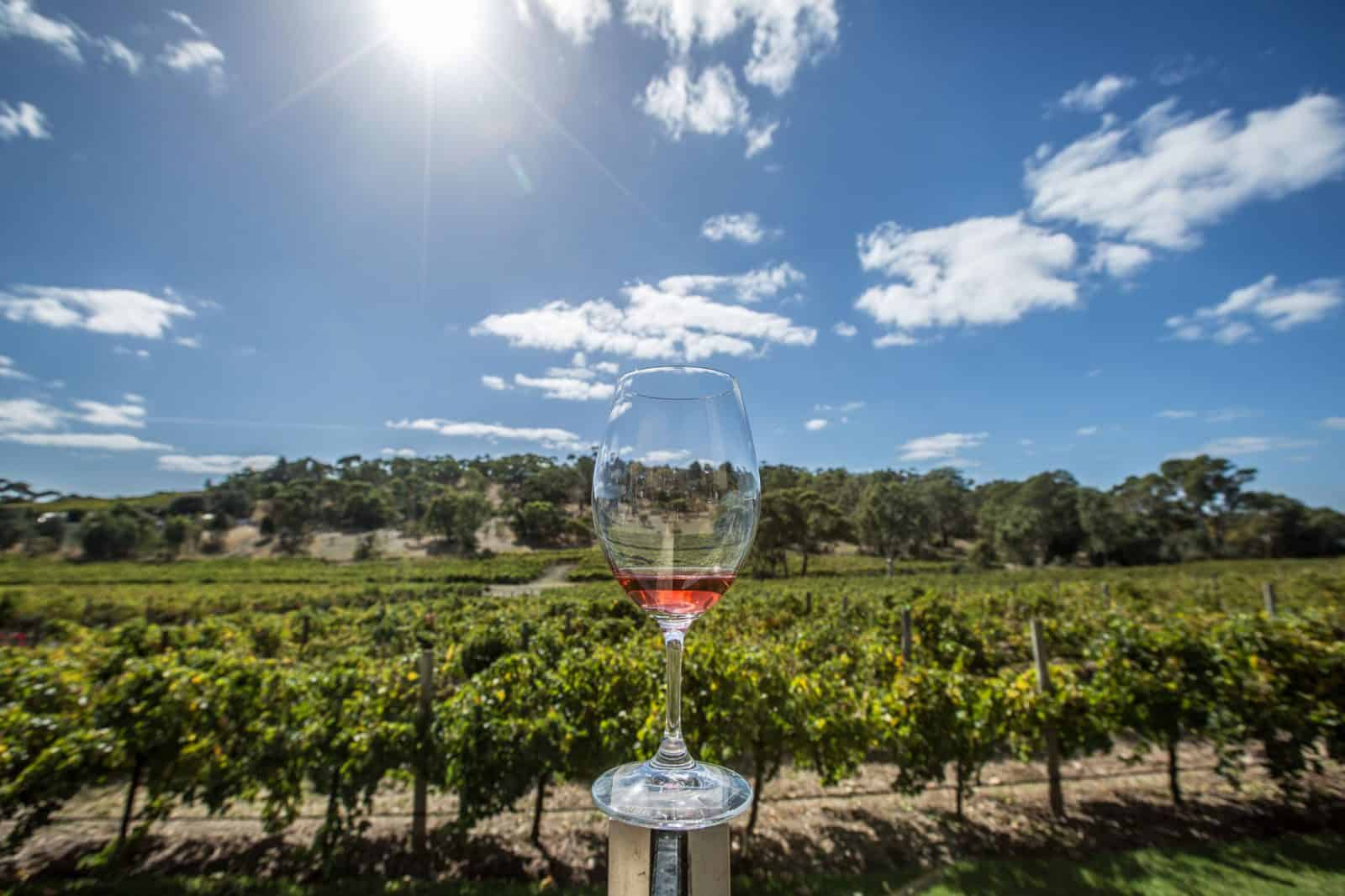 Adelaide, Australia is wine country!
