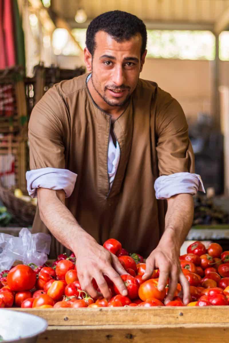 The tomato man of Giza.