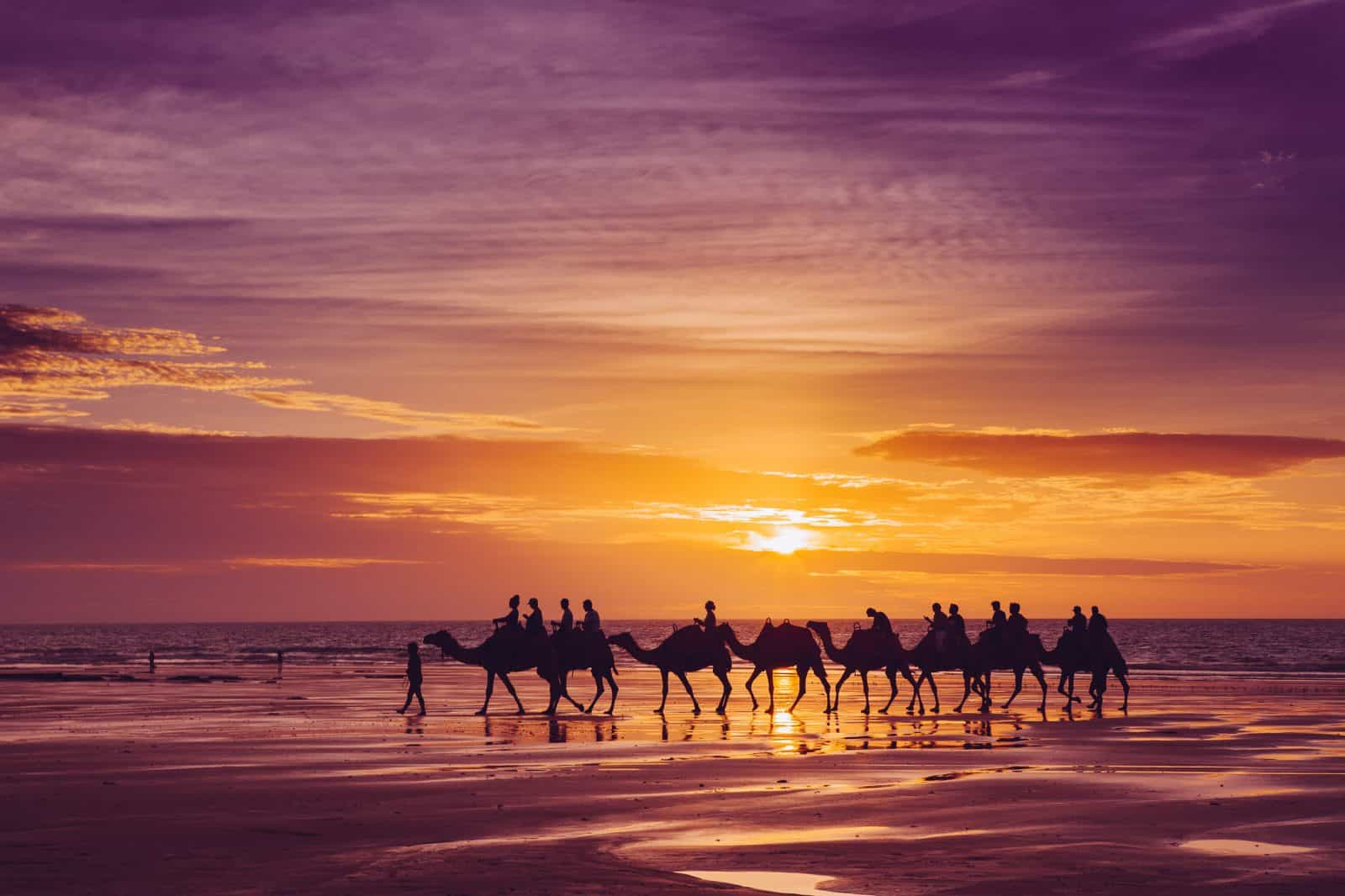 Photo credit: Camels on Cable Beach at Sunset