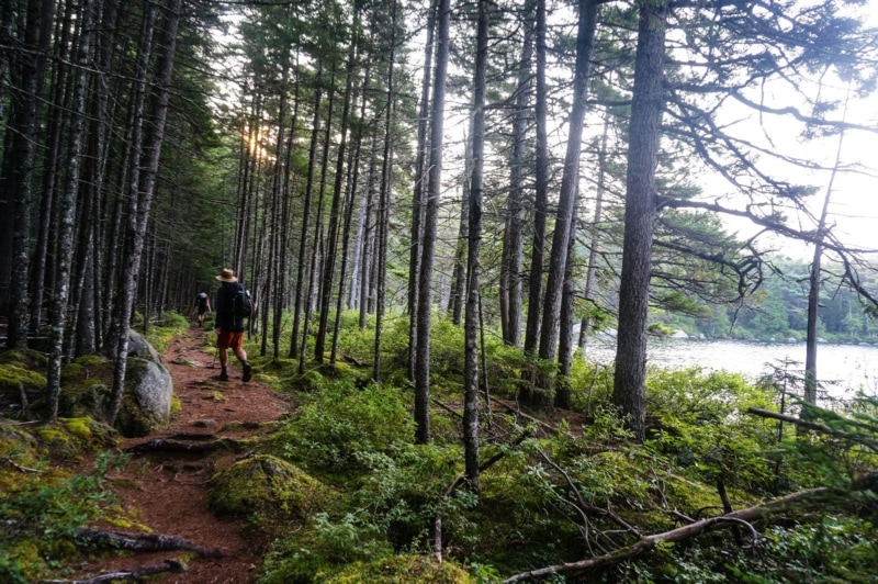 Hiking the Appalachian Trail in Maine