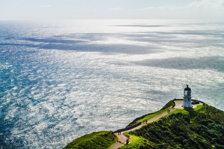 How to Get a New Zealand Working Holiday Visa