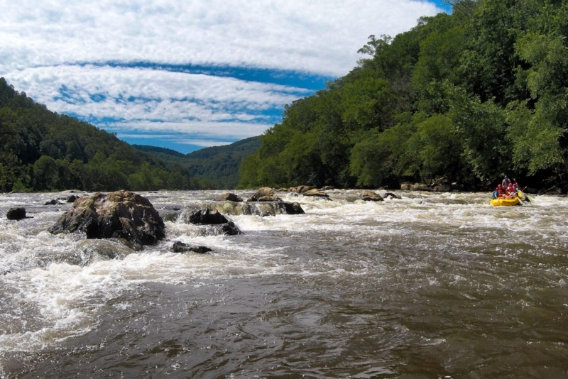 Rapids on the French Broad River