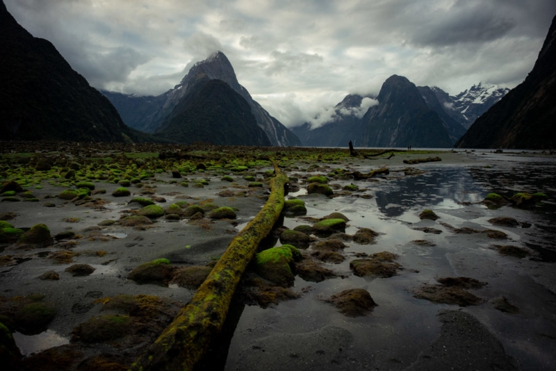 Moody days at Milford Sound
