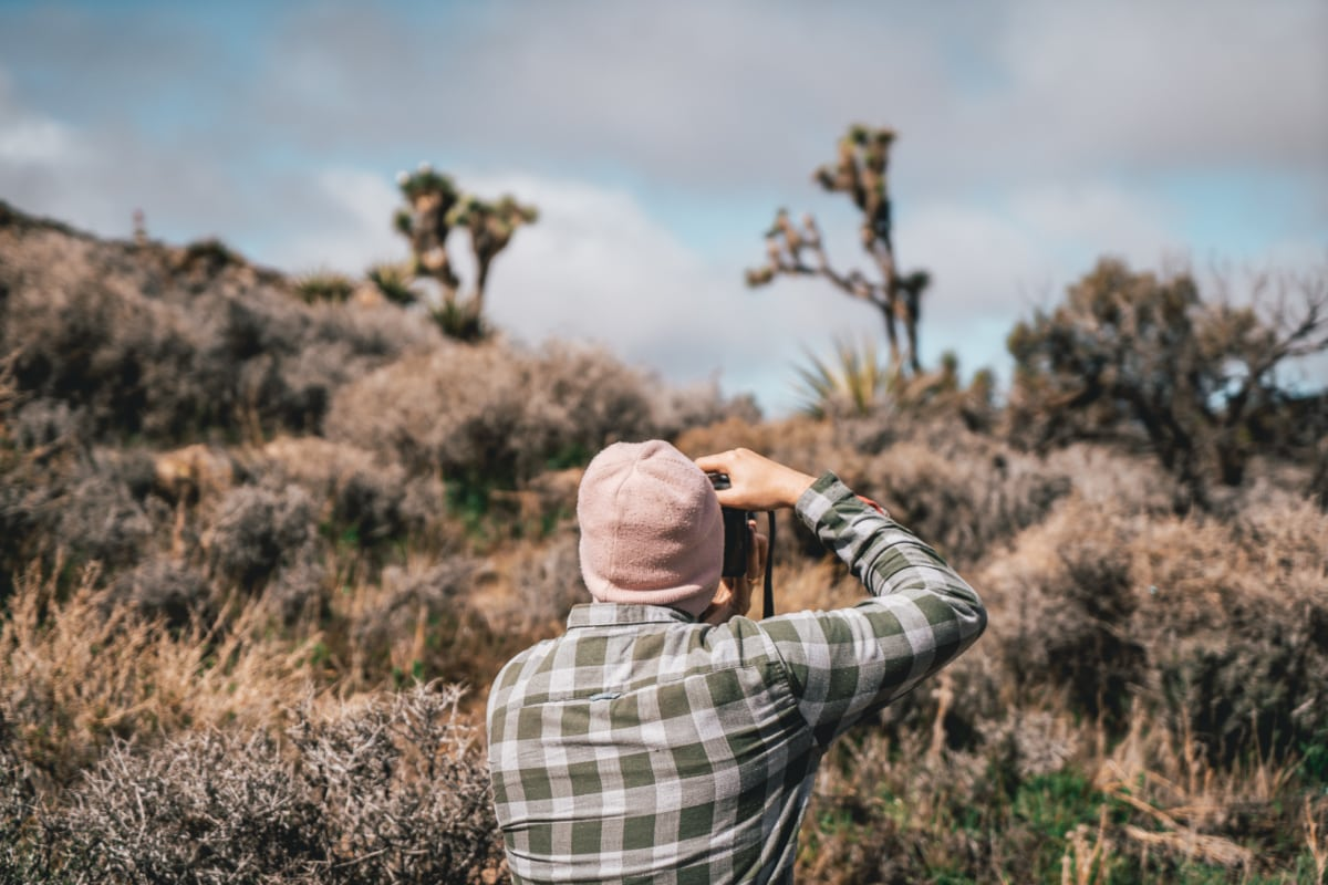 A Photographer's Road Trip Guide to Camping in Joshua Tree National Park