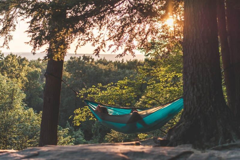 a person lounges in a hammock in the forest