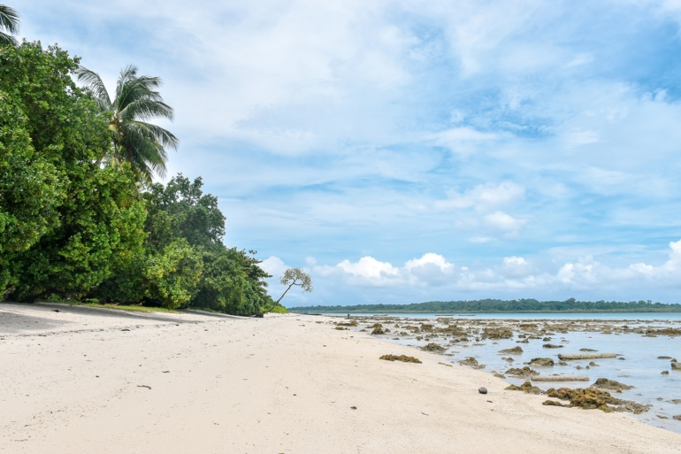 a sandy beachfront in the Andaman Islands, India