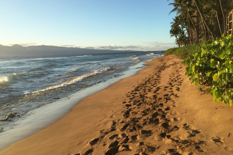 a beach with footprints in Maui, Hawaii