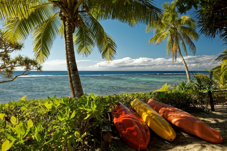 a beach with palm trees on the south pacific island of Tonga