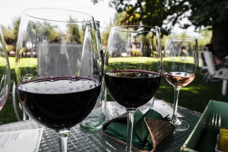 Vendimia Wine Harvesting in Mendoza, Argentina
