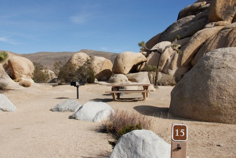 Belle Campground Joshua Tree