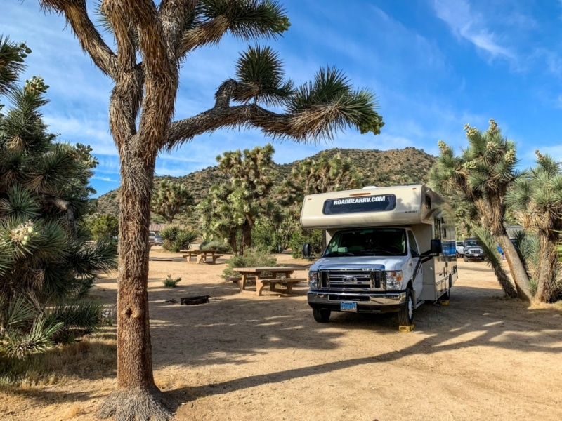 Black Rock Campground Joshua Tree