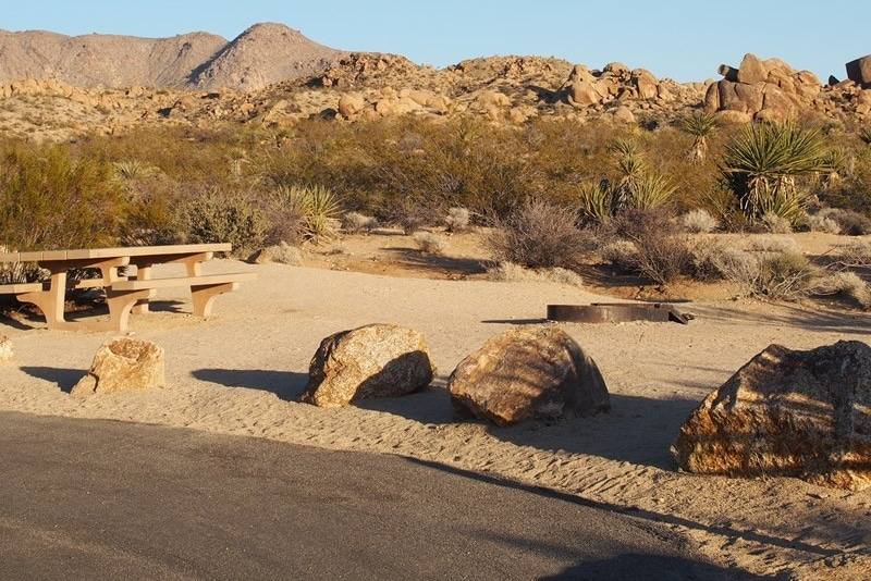 Cottonwood Campground Joshua Tree