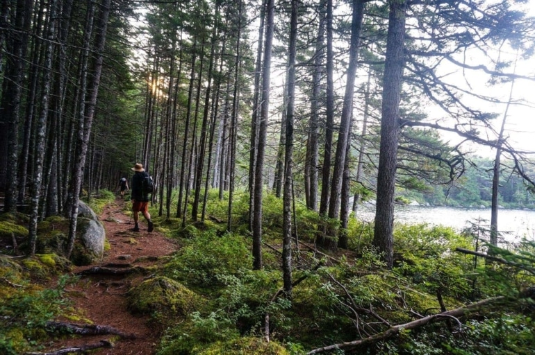 Trail Etiquette 101: The Basic Rules of Hiking