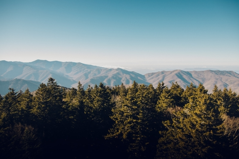National Parks Road Trip to Great Smoky Mountains National Park