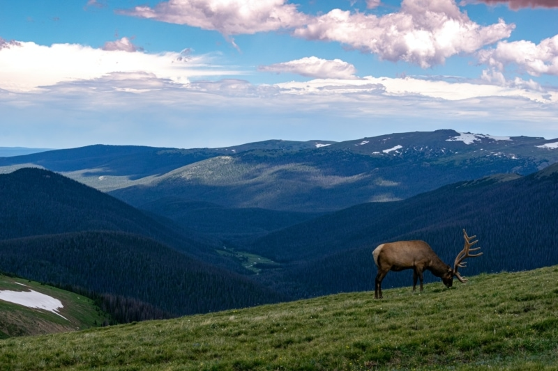National Parks Road Trip to Rocky Mountain National Park