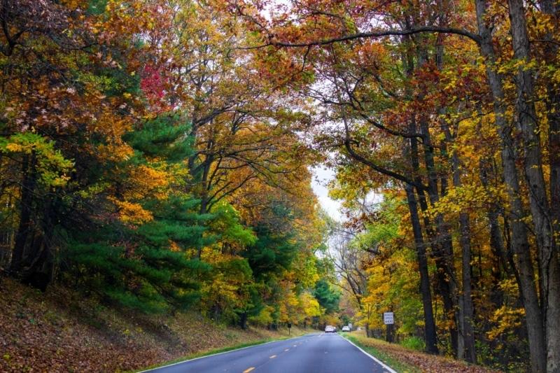 National Parks Road Trip to Shenandoah National Park
